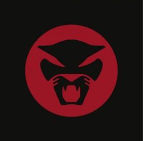Thundercatdavey on Thundercat    The Golden Age Of Apocalypse     Brainfeeder    Ping